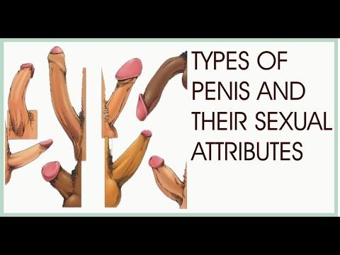 different kinds of cocks