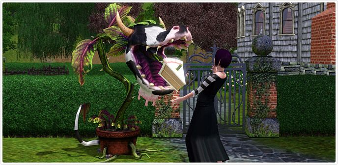 sims 3 laganaphyllis simnovorii (aka the cow plant) free download