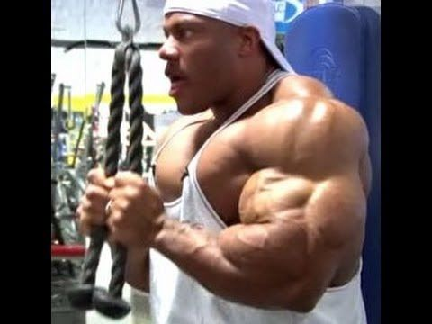 5x Mr Olympia Phil Heath Ultimate Arms/Biceps Workout - YouTube ...