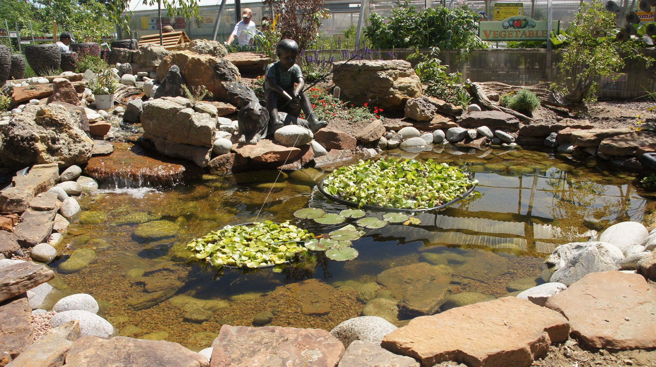 Our Pond From The Build A Pond Workshop We Hold Annually The Floating Greenery Are Water Hyacinth Water Garden Building A Pond Garden Center