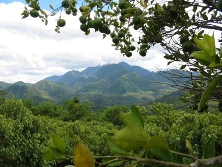Vais a los montanas por motocicleta para hacer una caminata.   Honduras mountains...