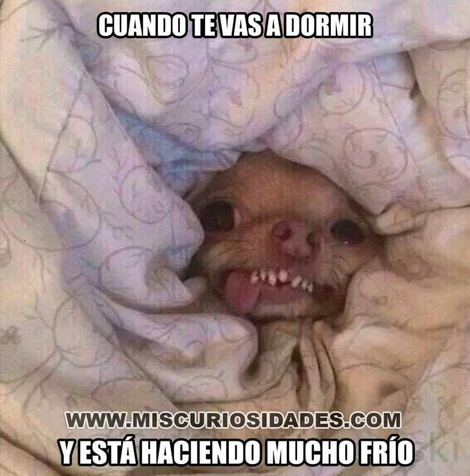Mi Mama Me Voy A Dormir Saludos De Buenas Noches A Dormir