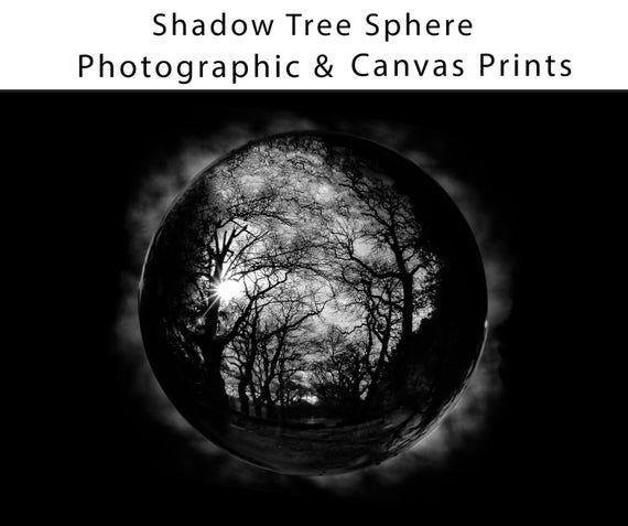 Shadow Tree Sphere Photograph, Woods, Woodland, Trees, Print, Nature, Black, White, Photo, Photograp#black #nature #photo #photograp #photograph #print #shadow #sphere #tree #trees #white #woodland #woods