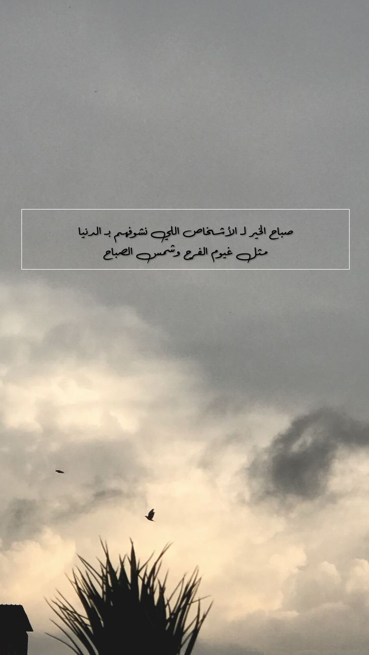 Snap Al7oobba7ar1 Morning Quotes Images Love Quotes Wallpaper Quotes About Photography