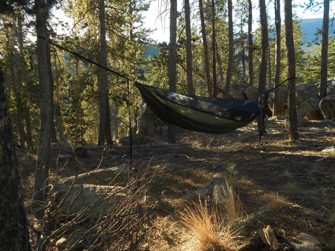 nz gear hammock outdoor web american cactus made magazine wilderness review