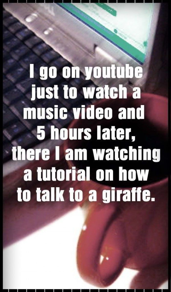 I Go On Youtube And 5 Hours Later Funny Quotes The Funny Just For Laughs