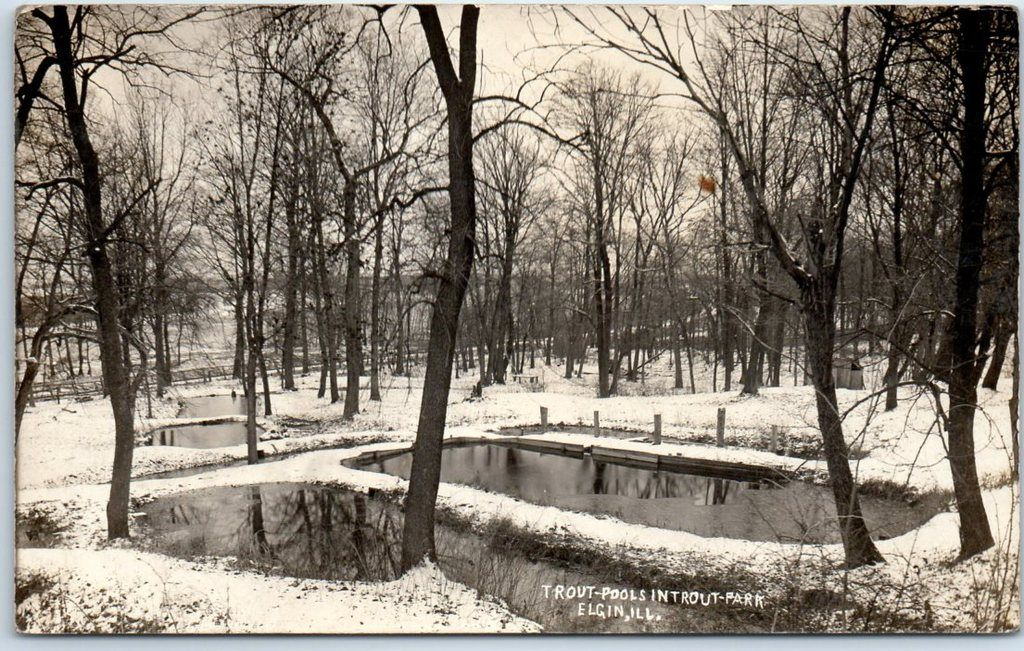 Pin by terri on ELGIN Local history, Outdoor, Hometown