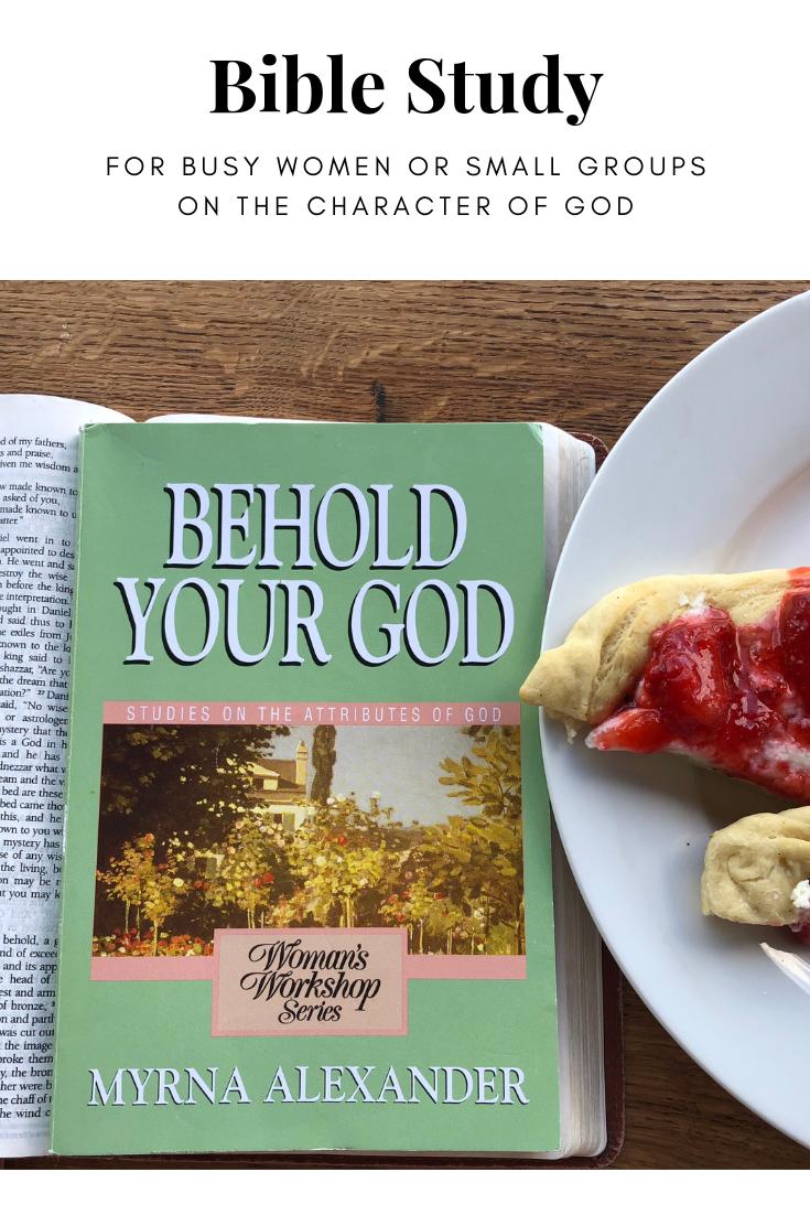 small group bible study ideas | bible study recs | pinterest | bible
