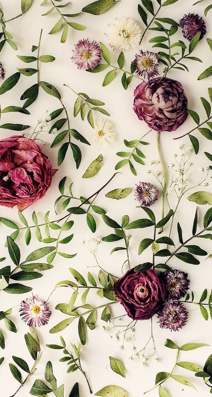 Wallpaper iPhone ⚪️ … | phone backgrounds | Floral ...