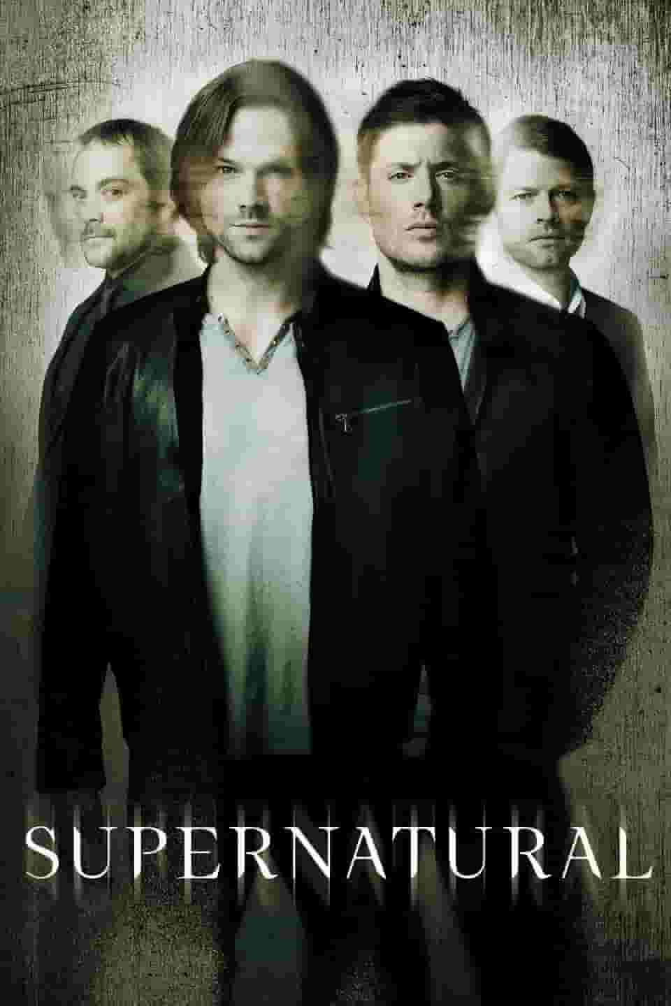 Assistir Supernatural Dublado 13ª Temporada Episodio 14 Online