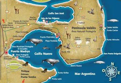 Fotos - Argentina map puerto madryn