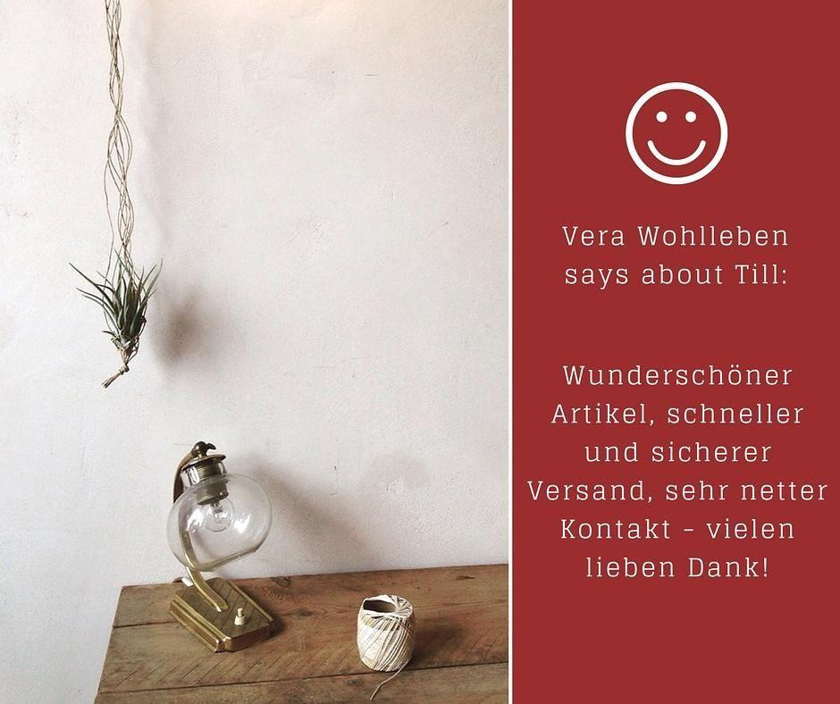 Luftpflanzen Berlin what our client say #tillherbacaeli #tillandsia #airplants