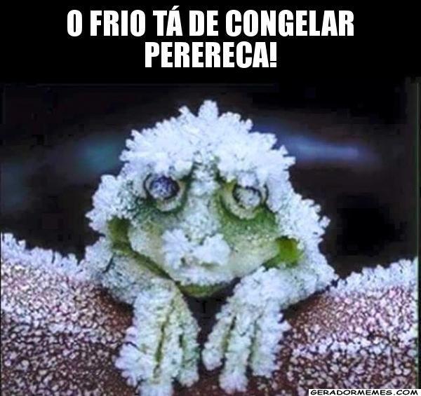 Solaris O Frio Voltou Humor Animais Ra Arboricola Repteis E Anfibios