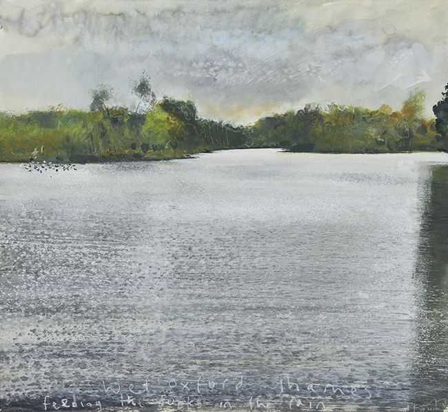 Wet Oxford Thames, feeding the ducks in the rain. September 2010 in KURT JACKSON from The Redfern Gallery