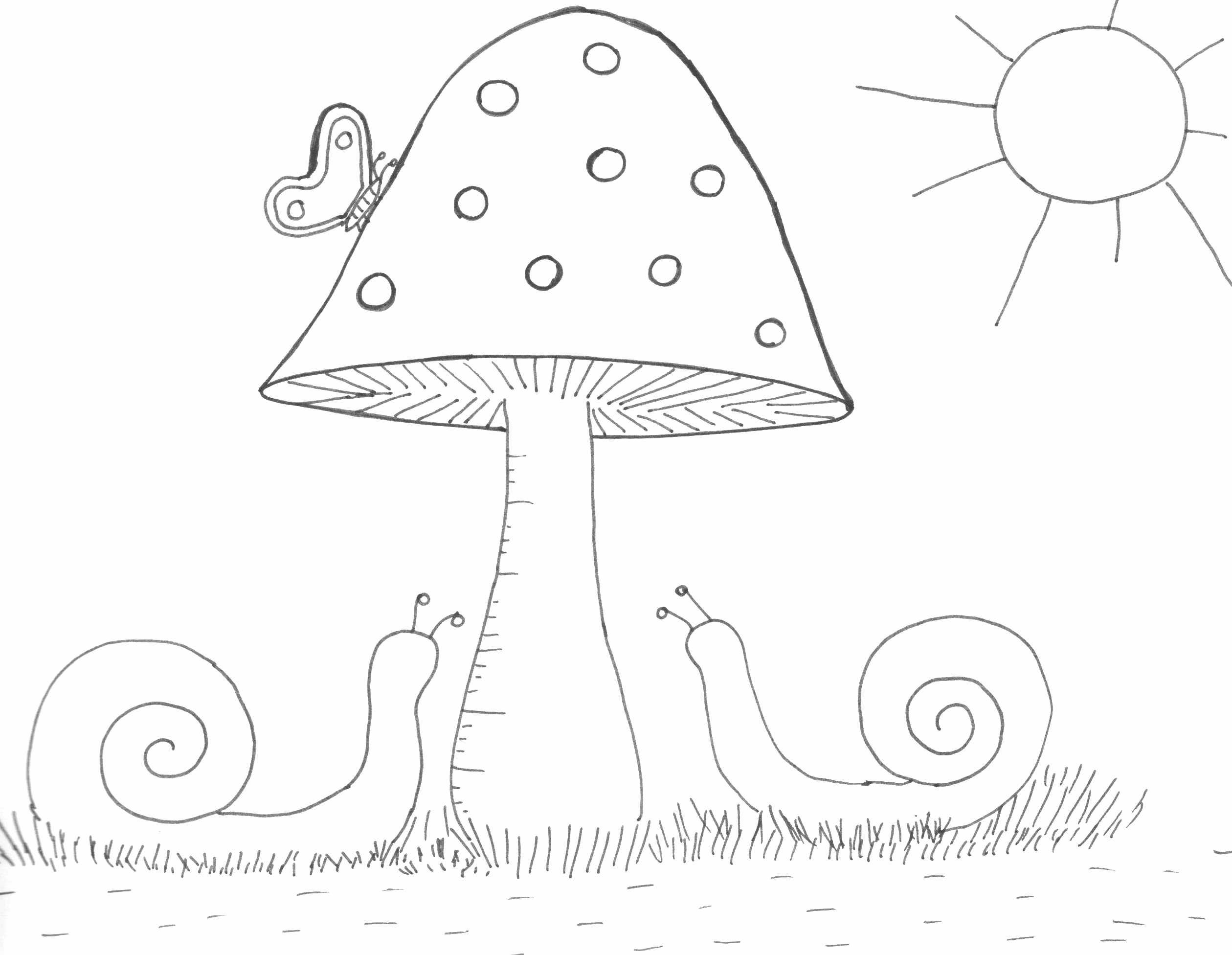 Worksheets Fungi Coloring Worksheet gomba rajz drawing mushroom snail and butterfly coloring page