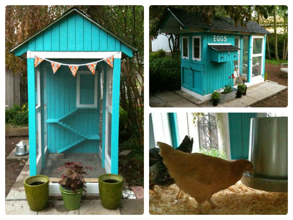 Cute chicken coop ideas beautiful chicken coops daddy for Small chicken coop plans and designs ideas