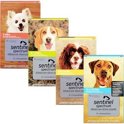Sentinel Spectrum Pet Meds Fleas Heartworm