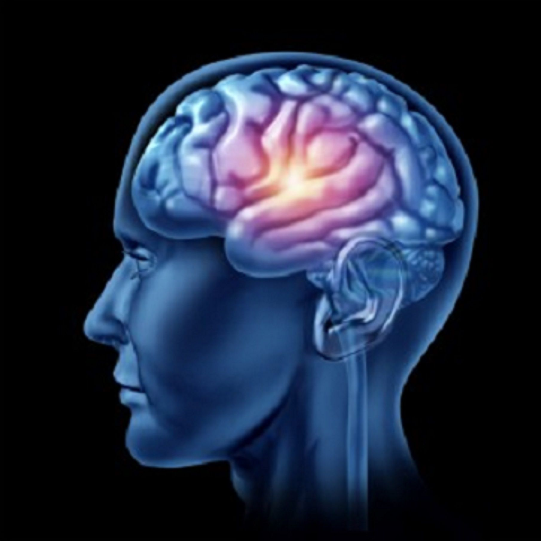 Manifestações cognitivas da Esclerose múltipla