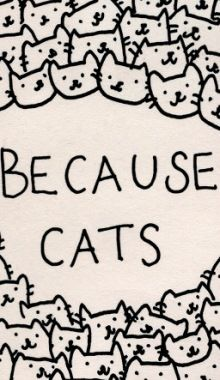 It's all about cats