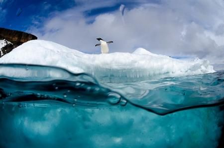 love this great angle! antarctic photo - get icy!