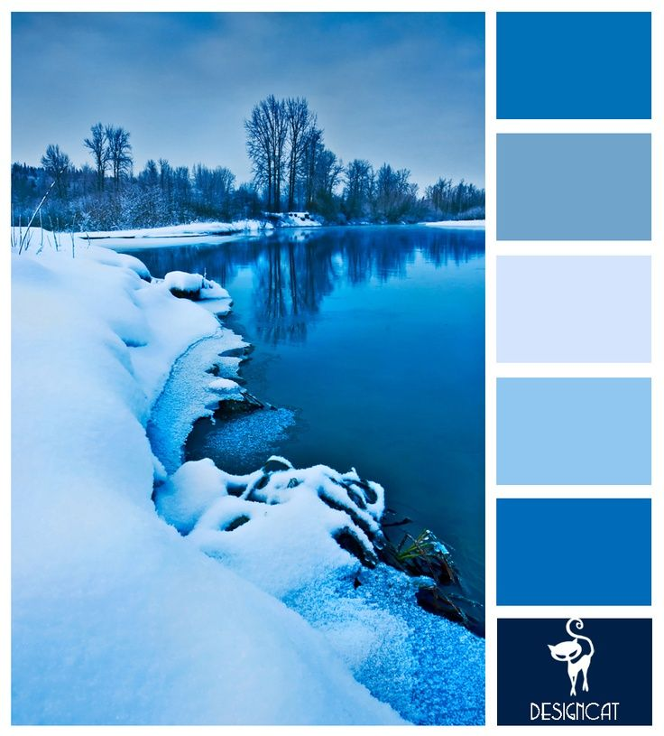 ombre color palette - Google Search | Ice blue color ...