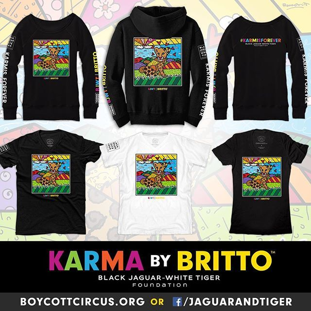 KARMA by BRITTO! I am so excited about this Collection! ✨🐾 Romero Britto has been an Angel to the Foundation and thanks to him we are able to bring you these t-shirts and hoodies of Karmita painted by him. No words to thank him and to thank you for your support. You can get them on our Facebook store /jaguarandtiger or at www.boycottcitcus.org . #blackjaguarwhitetiger #KarmisForever #ItsAllForLove @brittopopart @blackjaguarwhitetiger #BrittoPopArt #ThankYou #DonateToday