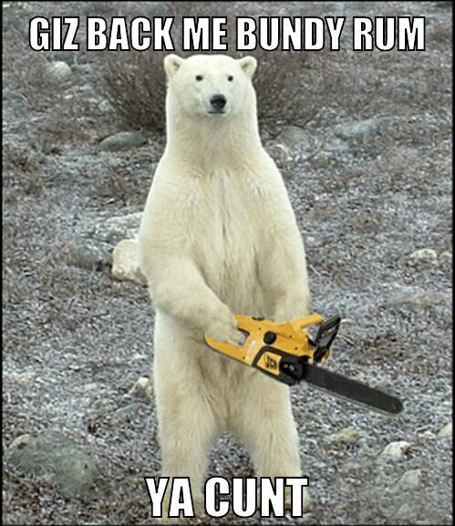 6ebf7e29bfb0c7d9c19048a14543e64c bundy bear polar bear memes pinterest bears, aussie memes