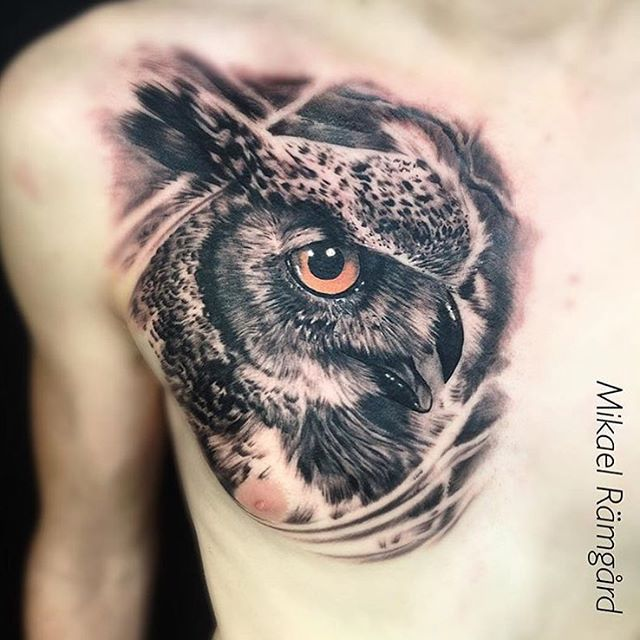 Owl Chest Piece Tattoo Tatuaje De Buho Pequeno Tatuajes De