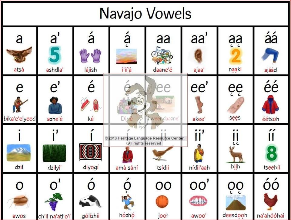 Navajo Vowel Poster Learn The Navajo Language Din Bizaad More
