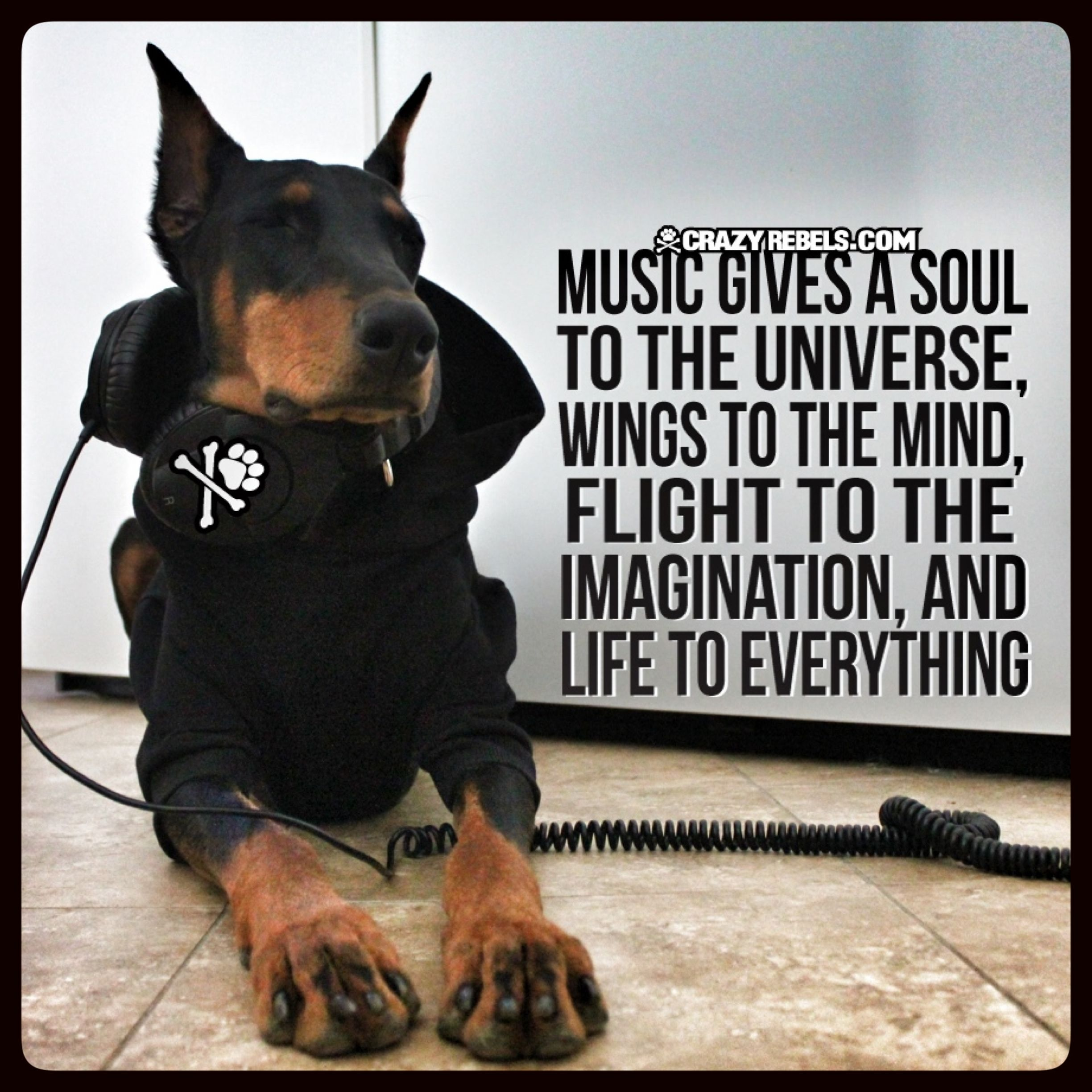 Music Is Good For The Soul Doberman Crazyrebels Quotes