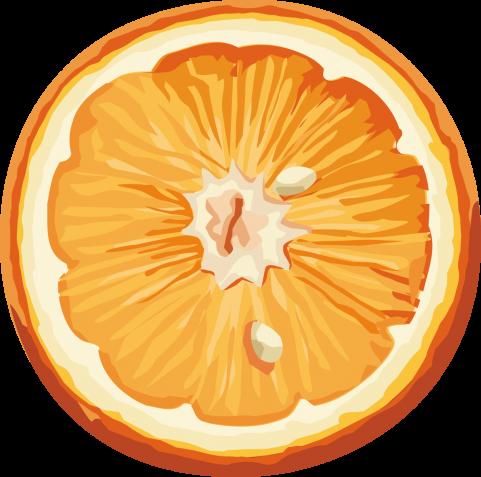 Orange Watermelon Background Orange Tropical Fruit