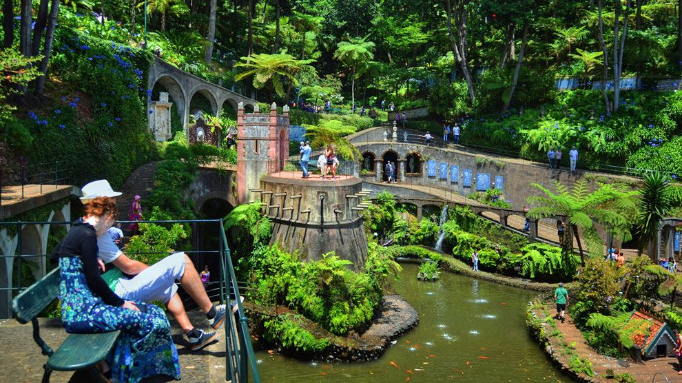 El Jardin Tropical Del Palacio De Monte Esconde Olivos Centenarios