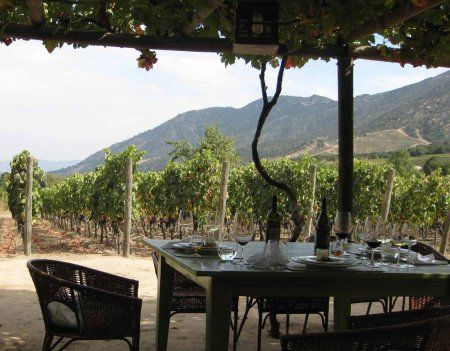 Lunch at Lapostolle Winery in Chile's Colchagua Valley