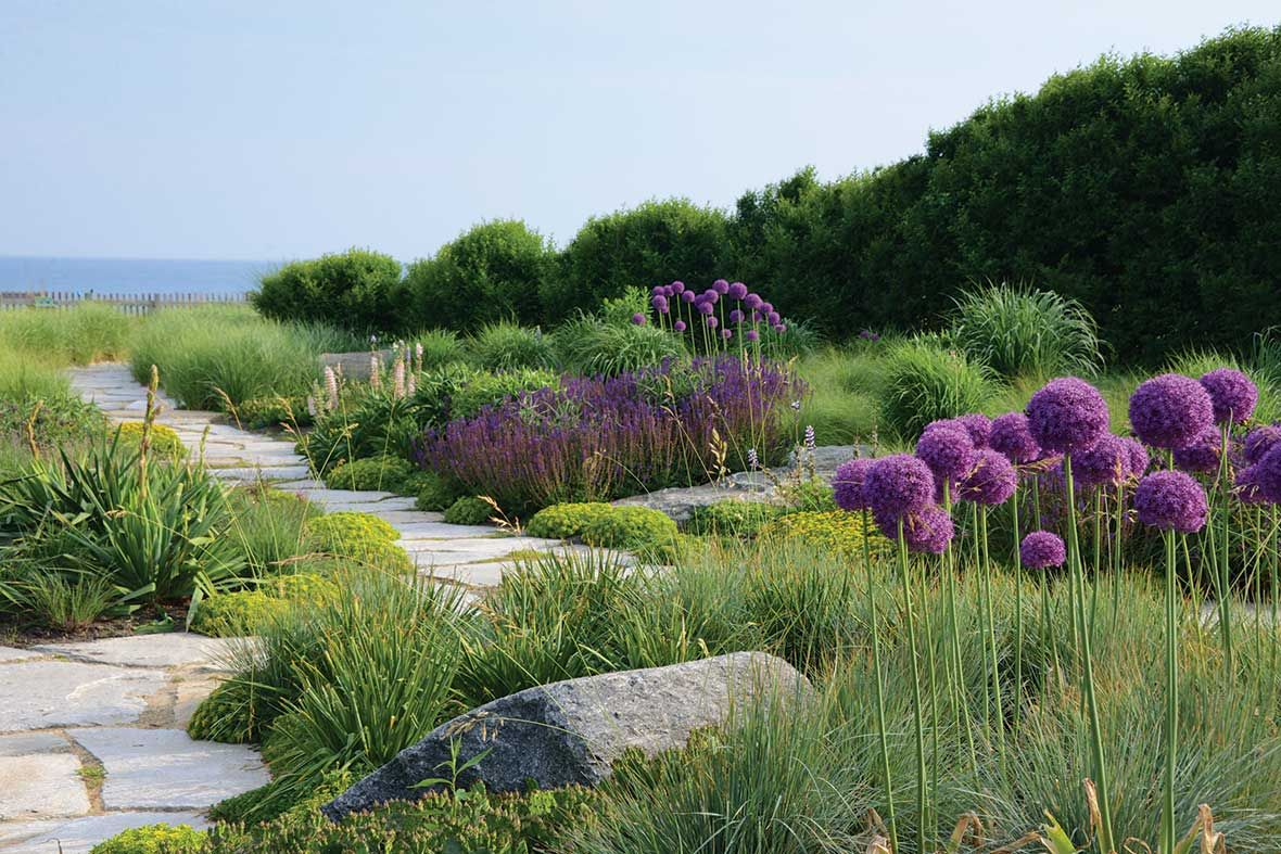 The New American Garden The Landscape Architecture Of Oehme Van