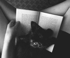 Book Reading Pal