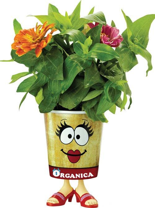 Custom grow cup kits include everything you need to grow a cute flower girl. Add your full color imprint for a fun personalized gift.