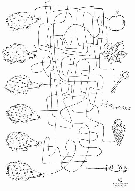 arbeitsblatt igel elegant herbst labyrinth dyslalie