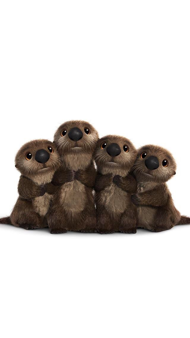 Funny Wallpaper Iphone Wallpapers Baby Otters Finding