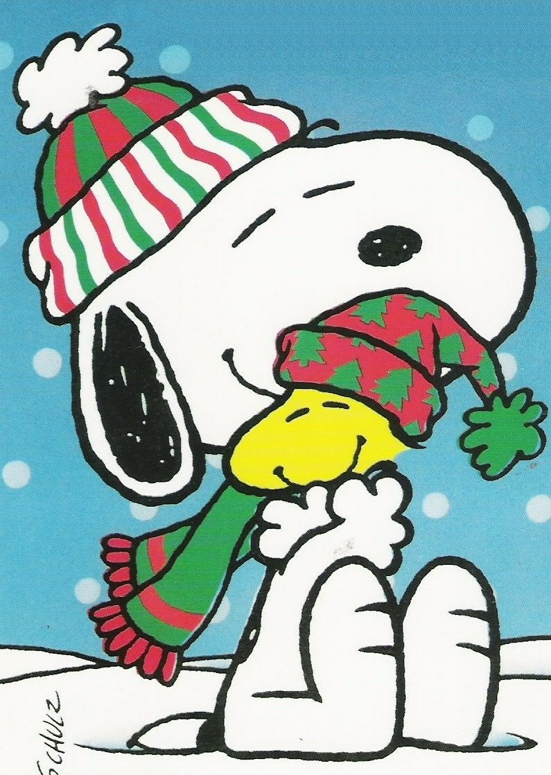 Pin by Cindy Fisher on Christmas | Pinterest | Snoopy, Snoopy ...