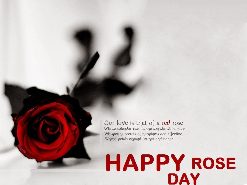 Happy Rose Day 2017 Greetings Messages Sms Whatsapp Status Happy Valentine Day Quotes Valentines Day Quotes Images Valentines Day Wishes