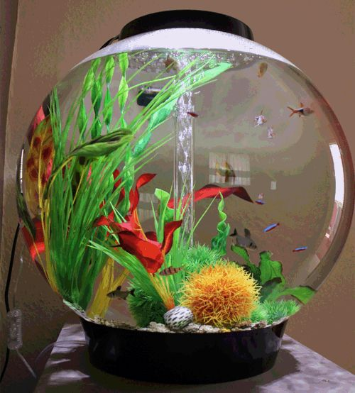how to safely clean the inside of a fish tank