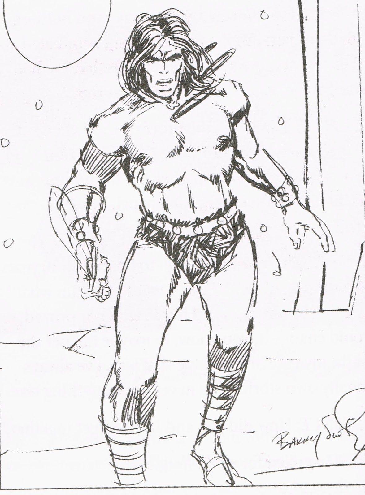 Cap'n's Comics: A Conan Sketch by Barry Smith