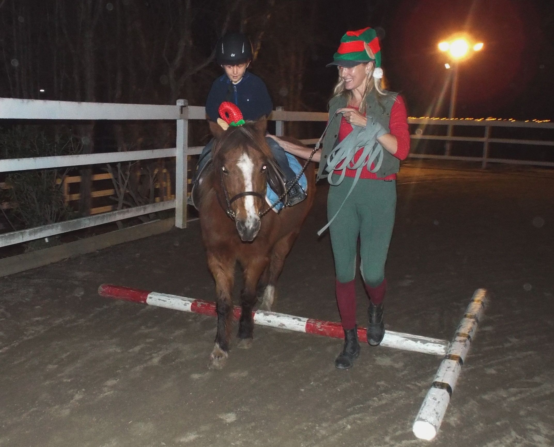 Christmas lights pony rides in North County San Diego and petting zoo!   Pony rides, Horseback ...