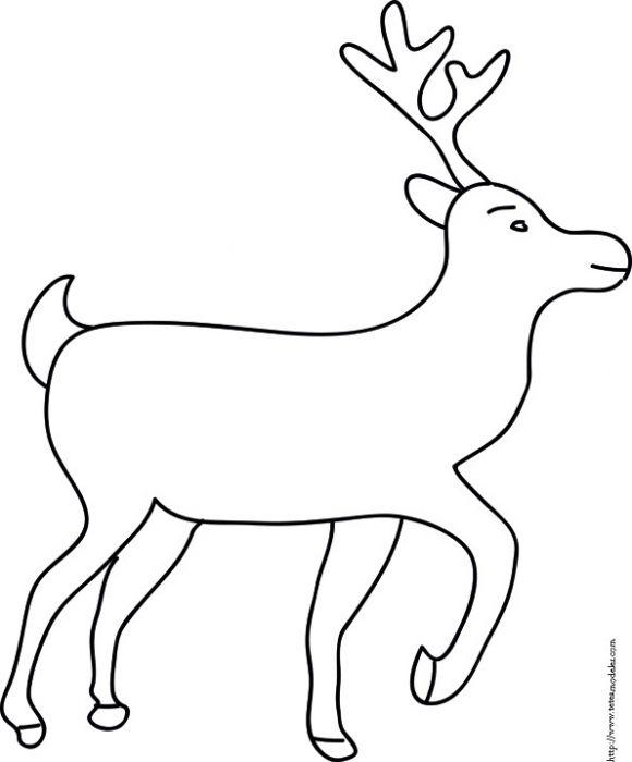 Coloriage du grand renne d cors fen tres pinterest coloriage noel et coloriage hiver - Dessin de rennes ...