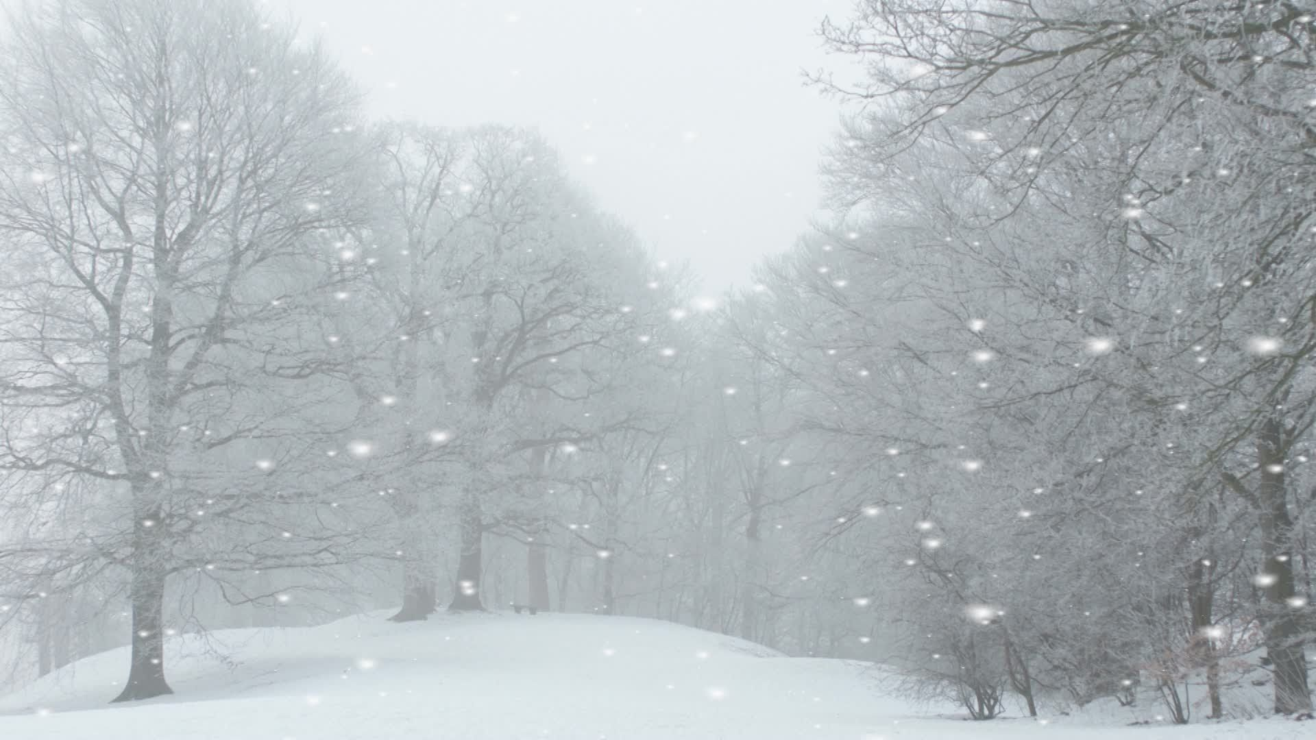 Animated Snow Falling Landscapes Google Search Winter Landscape Winter Pictures Landscape