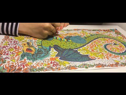 Enchanted Forest 24 Gizemli Orman By Johanna Basford Youtube