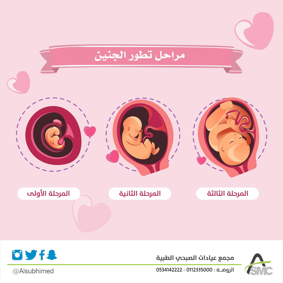 يمر تطور الجنين بثلاث مراحل أساسية حيث تبدأ المرحلة الأولى بتكوين الجنين خلال الثلاثة الاشهرة الاولى من فترة الحمل كما ت Pattern Design Medical Movie Posters