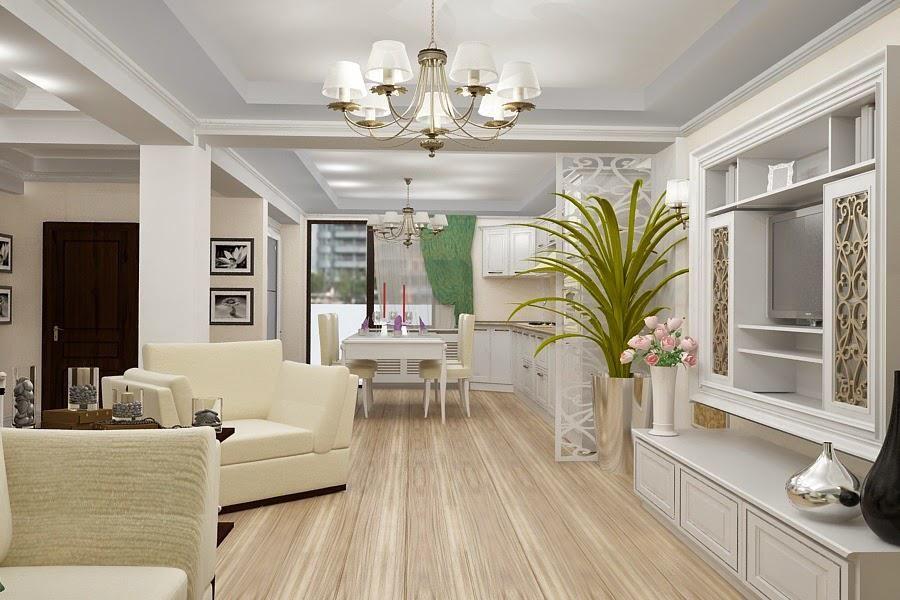 Amenajare living in stilul clasic contemporan pentru casa for Case interior design