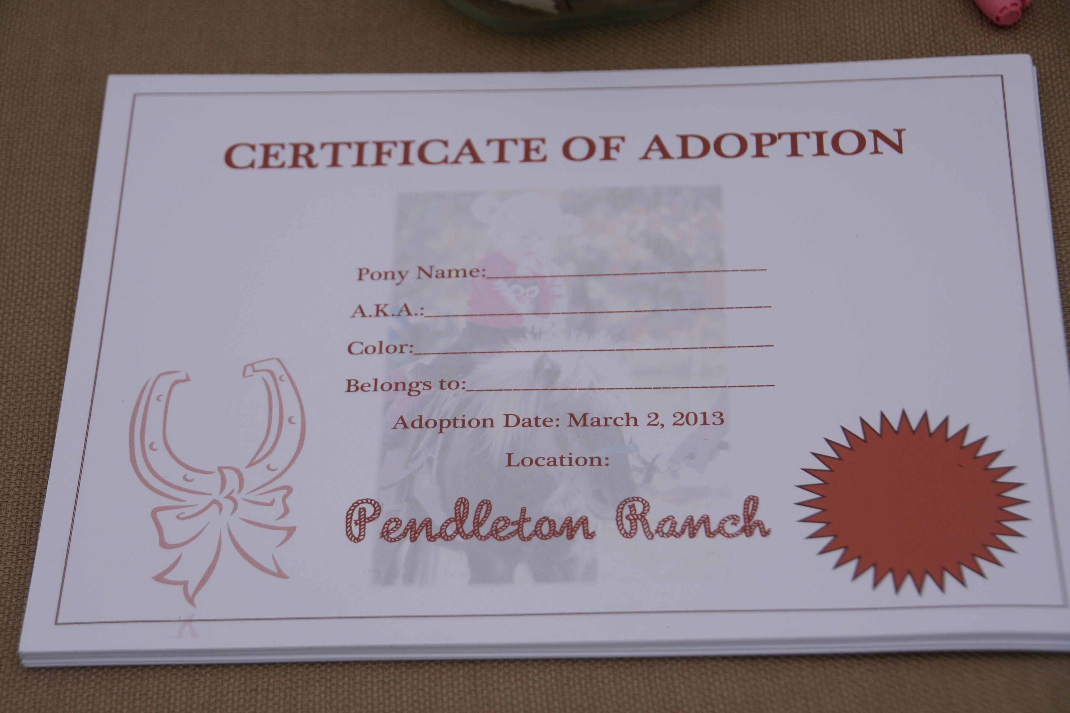 Once the kids chose a name, an adult filled out their Adoption Certificate. In addition to the show name, the kids gave the pony a barn name (a.k.a). Printed these Practically Perfect Certificate of Adoption on nice cardstock. The children really liked these.