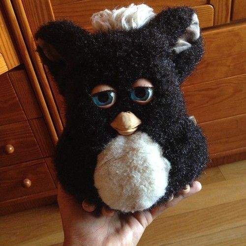 duartebreia:  look what i found! my cute old furby! ly  #furby #old #cute #ly #love #toy #childhood